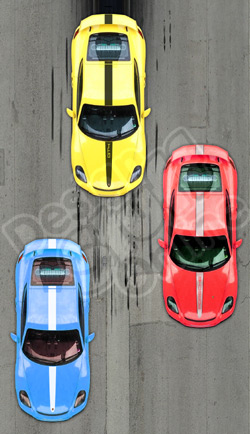 Porsche Cayman Decals Porsche 981 Graphics Stripes